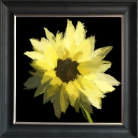 Scruffy Sunflower- Black Background- Silver Foil Finished