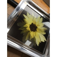 55x55cm Scruffy Sunflower- Black Background- Silver Foil Finished