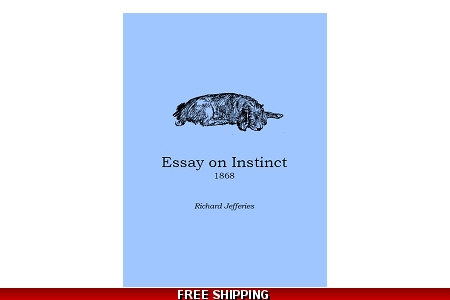Essay on Instinct