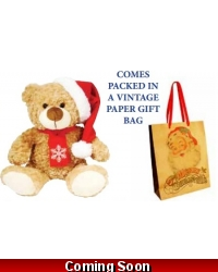 Image of Wrapped Grotto Toys - Plush Bailey Bear x 6