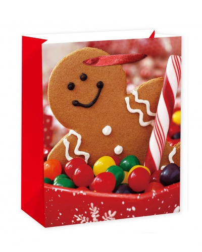 12 x Deluxe Large Gingerbread Gift Bags