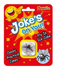 Image of 24 x Joke Fly In Ice Cubes