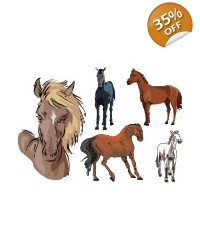 Image of 100 x Large Horse & Pony Tattoos