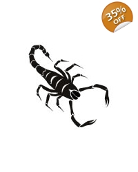 Image of 100 x Scorpion Tattoos