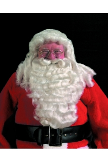 Deluxe Professional Santa, Extra Full Wig & Bear..