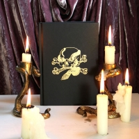 Snake and Skull Embossed Sketchbook Gold Black A5 Hardback