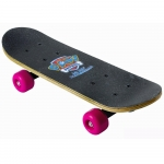 PAW PATROL Kid's 17-Inch Maple Wood Mini Skateboard Cruiser Black/Pink
