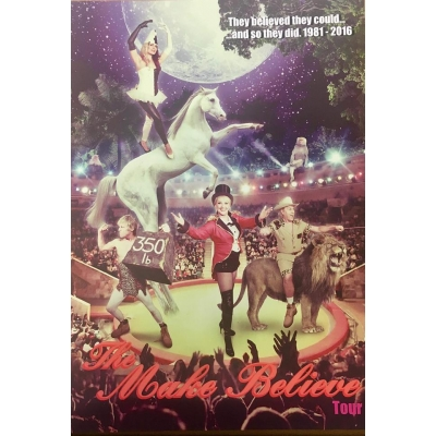 Make Believe Tour Programme