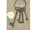 Gaoler Keys Giant Jailers Keys Cast Iron Garden