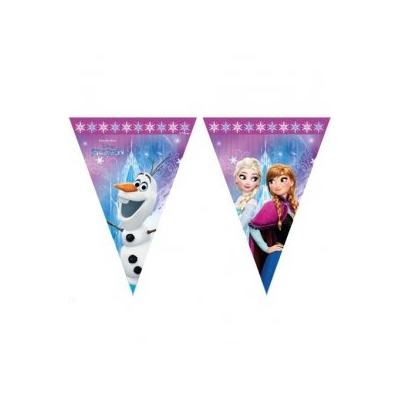 Disney Frozen Triangle Flag Banner
