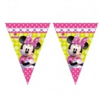 Disney Minnie Mouse Triangle..