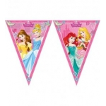Disney Princess Triangle Fla..