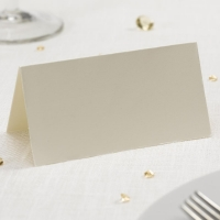 Simply Plain Ivory Place Cards
