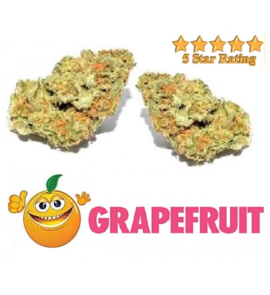 Grapefruit THC 25%