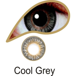 Cool Grey - 3 Month Lenses