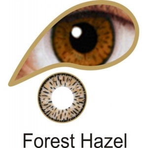 Forest Hazel Contact Lenses 3 Months