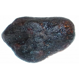 Garnet in Chromite Specimen ..