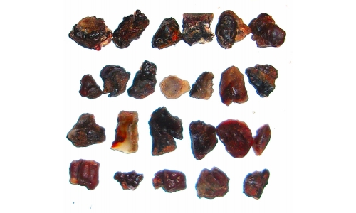 Fire Agate Deer Creek 15 to 25 MM 250 cts 223G