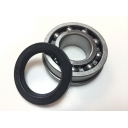 Rear Hub Bearing RIV & Seal