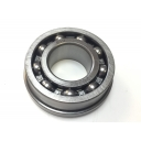 Rear Hub Bearing RIV