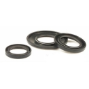 Oil Seal Kit PX