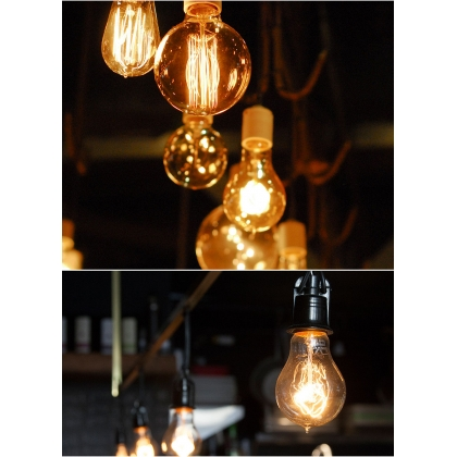 Festoon Lighting - 10 metre with Edison style globes