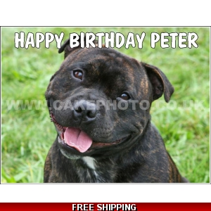 Staffordshire Bull Terrier / Staff Edible Cake Topper