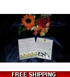 10 x Personalised Funeral/Memorial Sunflower Seed Favours