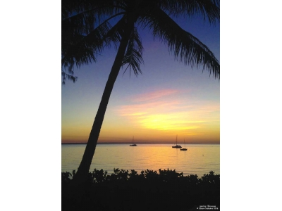Darwin Sunset Canvas Print