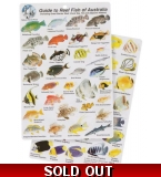 Guide to Reef Fish of A..