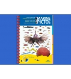 Marine Pictolife Guide ..