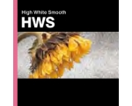 HIGH WHITE SMOOTH 315gsm A/3+ 20-Shts