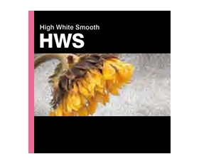 HIGH WHITE SMOOTH 315gsm A/2 20-Shts