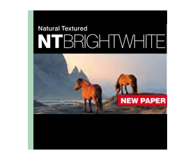 NT BRIGHT WHITE 315gsm 24'' x 15m - Roll