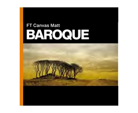 FT CANVAS MATT BAROQUE 350gsm 17'' x 15m - Roll