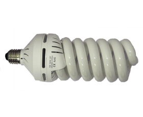 30w Fluorescent Lamp LIT008