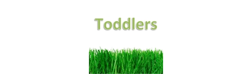 Toddler girls (12.5cm to 15.8cm)