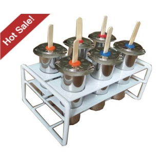 Popsicle Mould Set