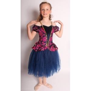 f32e9fe2d Dance Costumes