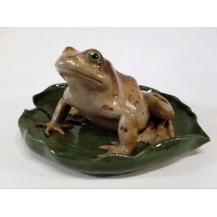 Frog on lillypad - Handmade in stoneware clay