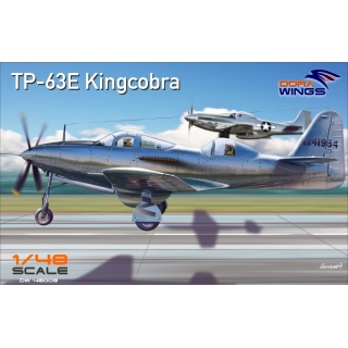Bell TP-63E Kingcobra Two seat 1/48