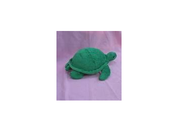 Weighted Turtle - 1kg